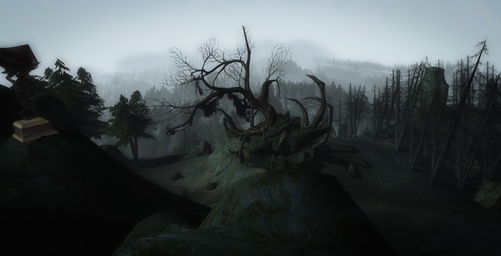 A lone dead tree in Mirkwood