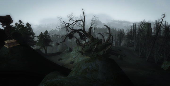 A lone dead tree in Mirkwood
