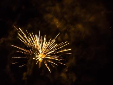 fireworks_2016_3