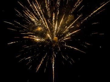 fireworks_2016_5